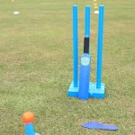 Blue Children's Cricket Bat & Stumps against Grass Background branded with LW logo
